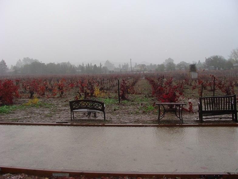Wet Santa Clara