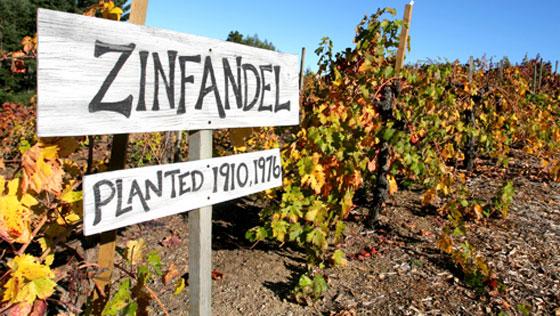http://www.winery-sage.com/blog/wp-content/uploads/2013/03/Zinfandel-Sign.jpg