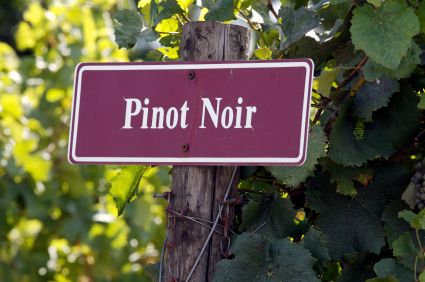 Pinot Noir food pairing ideas