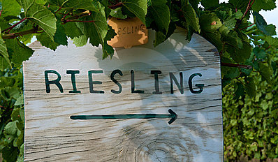Riesling Food Pairing Options