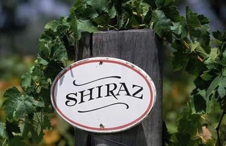 Shiraz Wine Sign