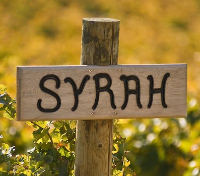 Syrah Red Wine Sign