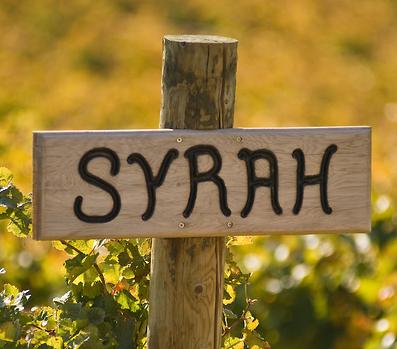 Syrah Red Wine Sign