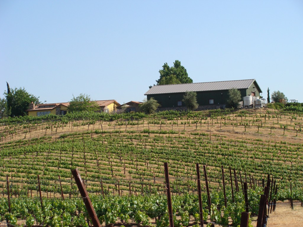 Palumbo Family Vineyards and Winery in Temecula