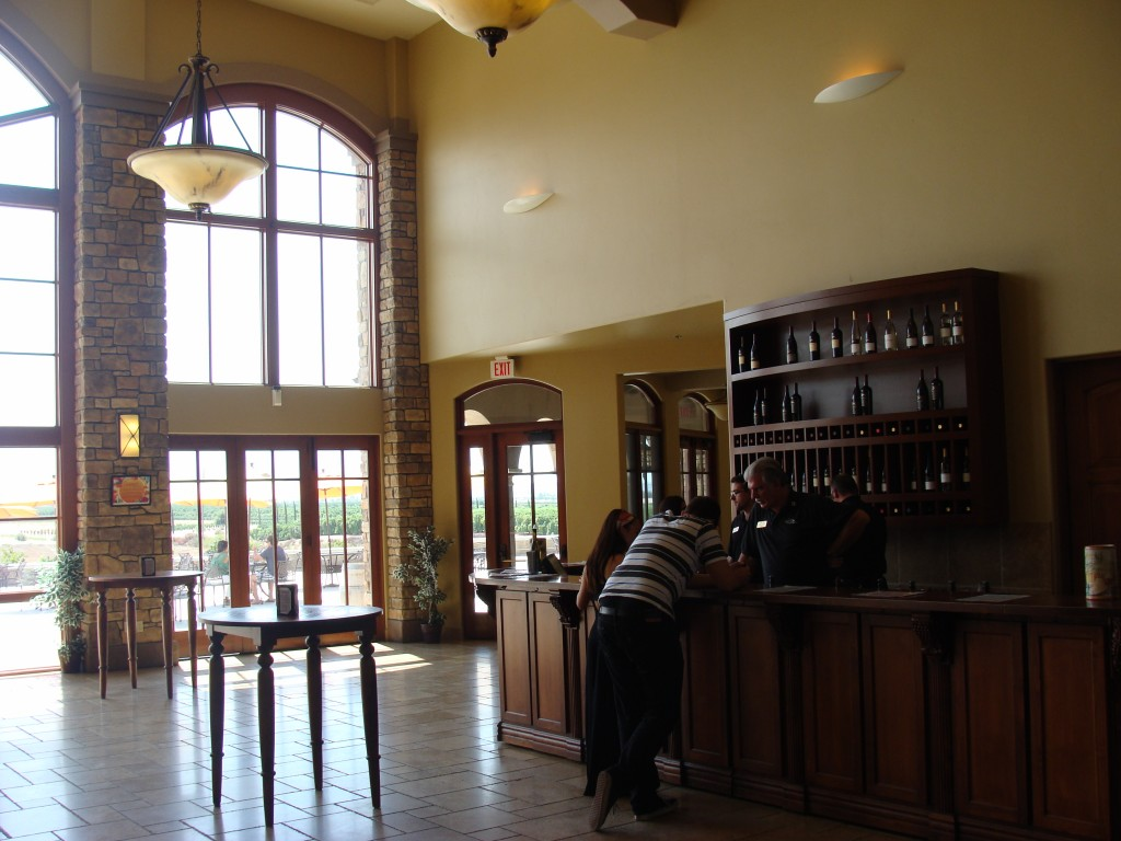 Wine Tasting at Monte De Oro