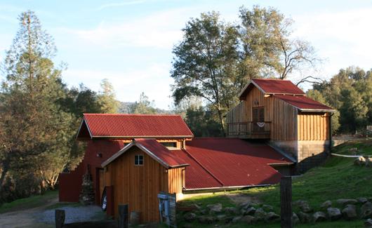Primitivo at Westbrook Wine Farm